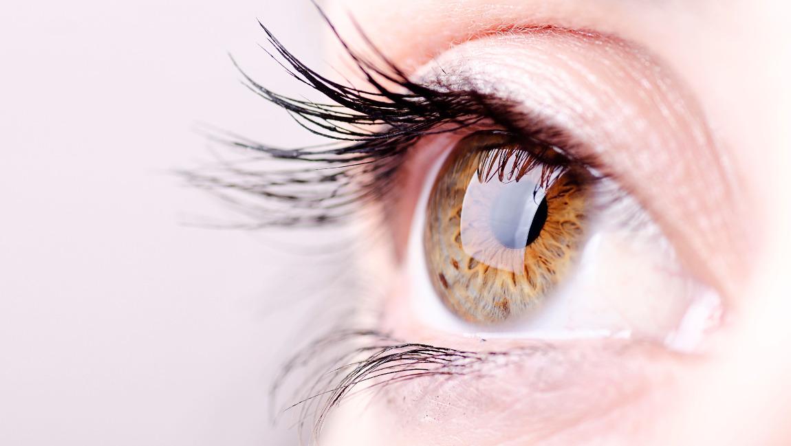 glaucoma-news-torino
