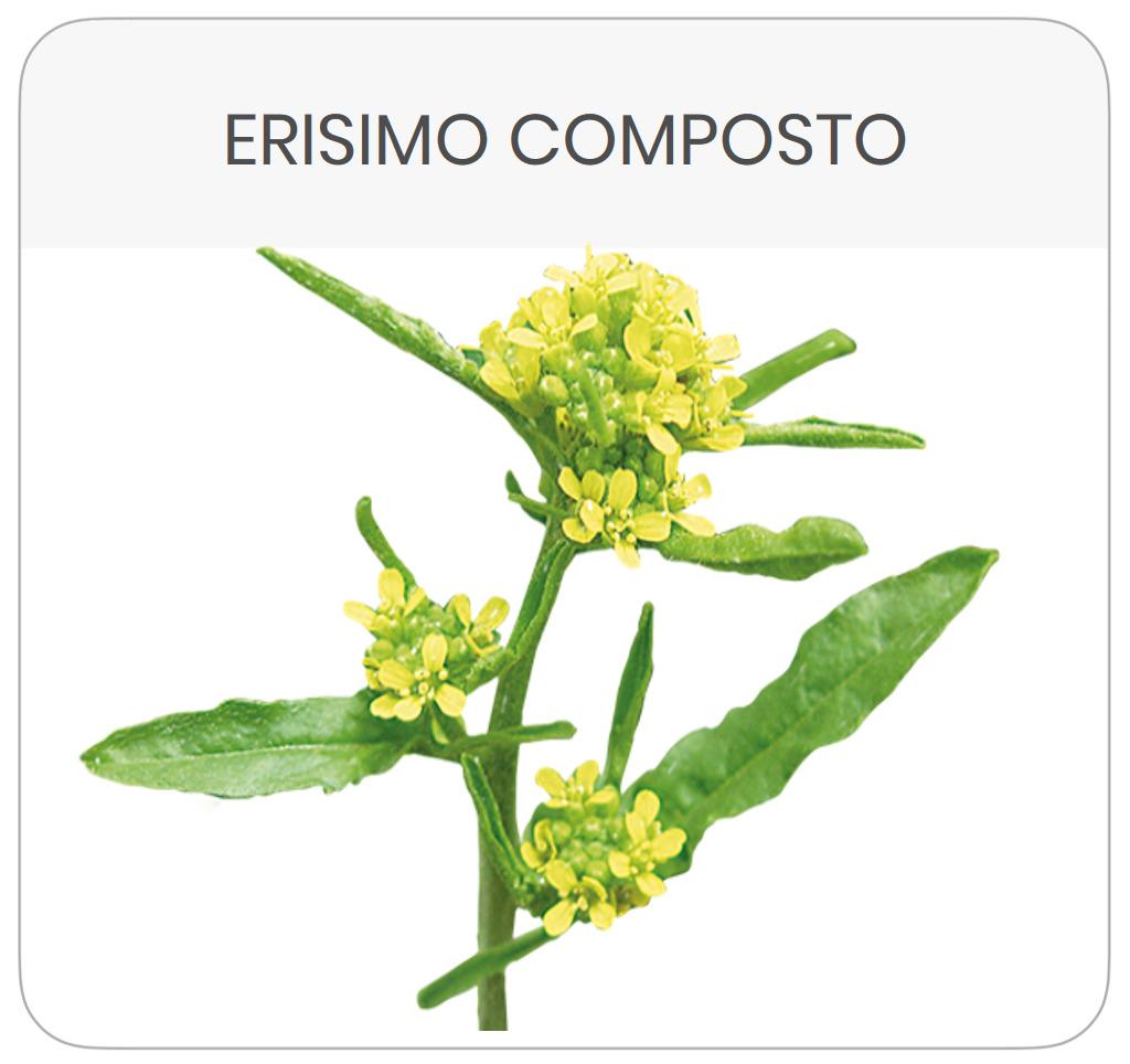 scheda-prodotto-erisimo-composto