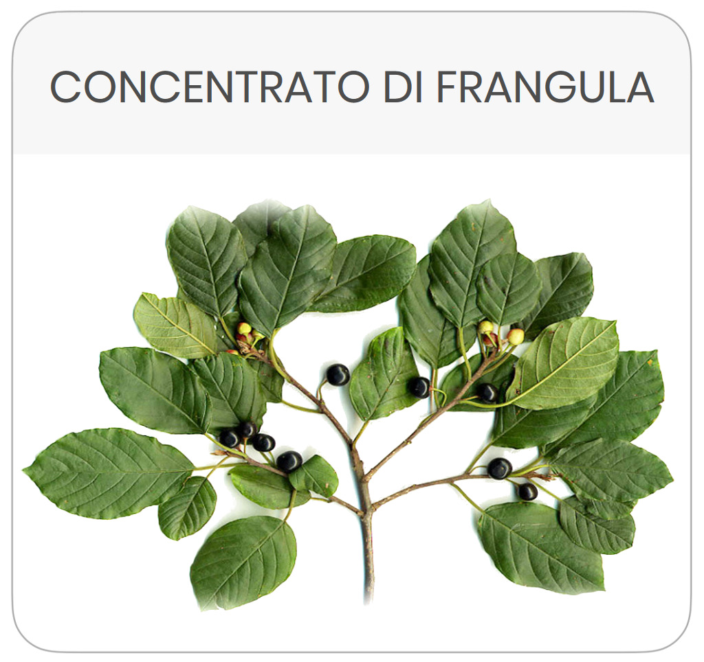 scheda-prodotto-frangula-composta