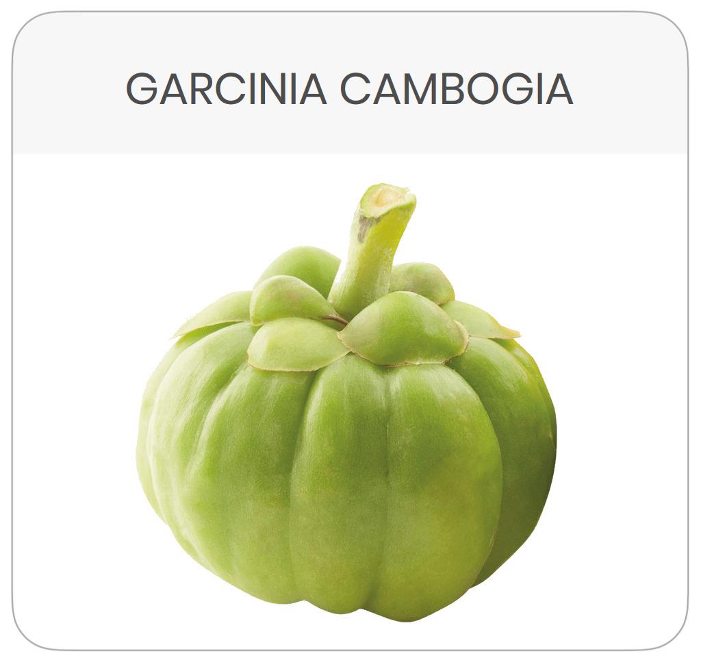 scheda-prodotto-garcinia-cambogia