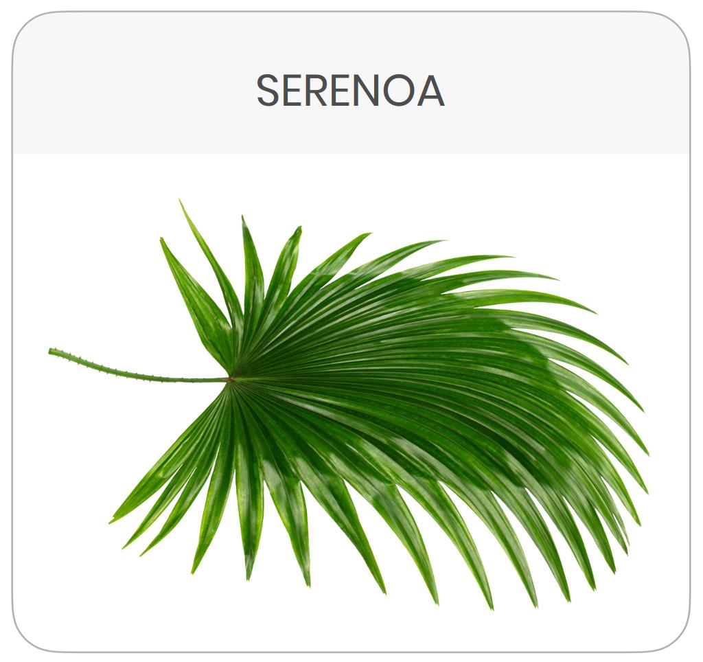 scheda-prodotto-serenoa-repens