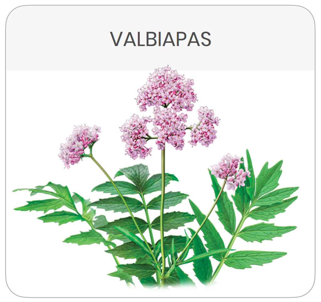 scheda-prodotto-valbiapas