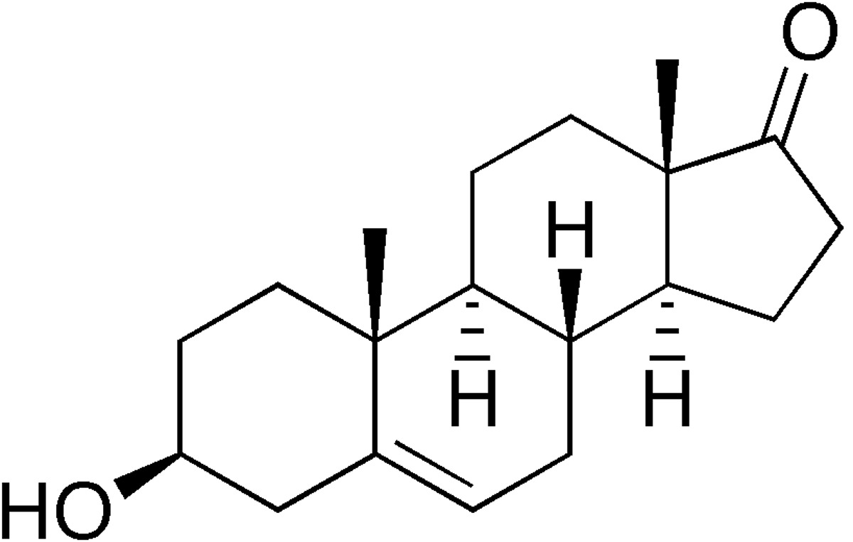 test-DHEA-torino
