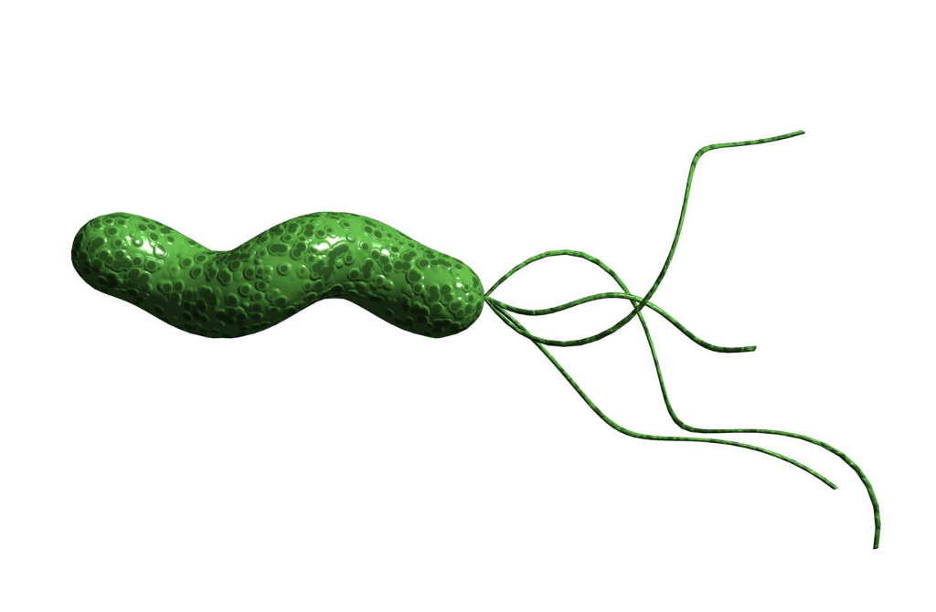 test-helicobacter-pylori