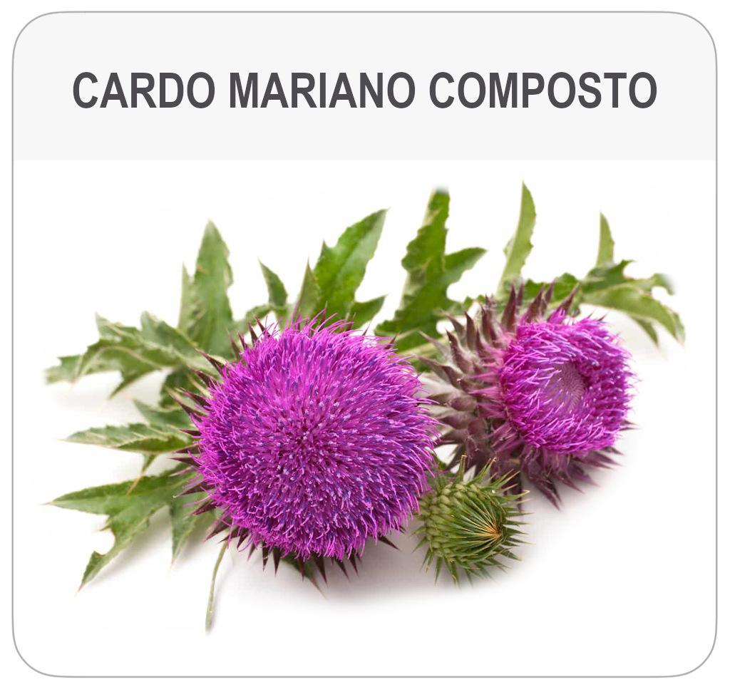 scheda-prodotto-cardo-mariano-composto